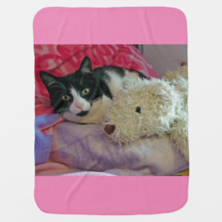 Cat and teddy blanket