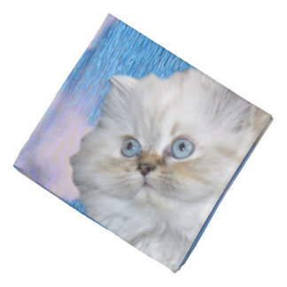 Cat and Water Bandana