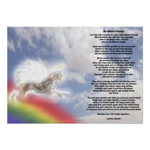 Cat Angel At Rainbow Bridge Poster