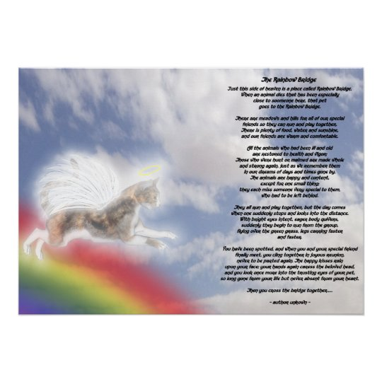 Cat Angel At Rainbow Bridge Poster