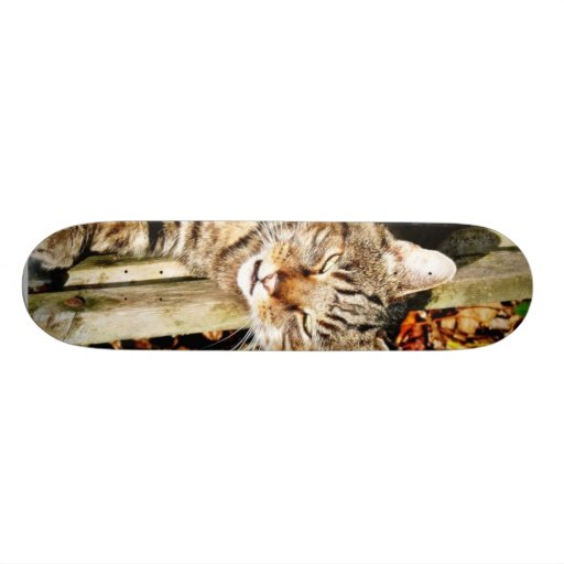 Cat Animal Pet Garden Skate Board Decks