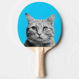 Cat animal pet photo cute black and white ping pong paddle