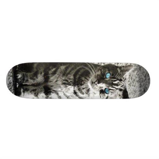 Cat Animal Pet Skate Boards