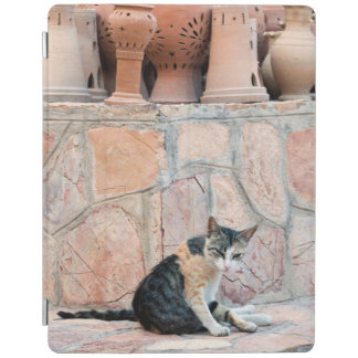 Cat at Nizwa Souq iPad Smart Cover
