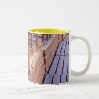Cat at Petra Two-Tone Mug