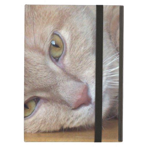 cat at rest iPad cover