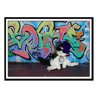 Cat Attitude.....Kitten and Graffiti Wall Pack Of Chubby Business Cards