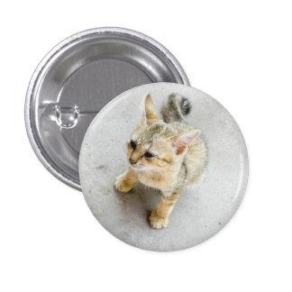 cat 3 cm round badge