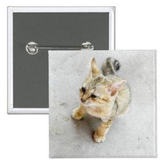 cat 15 cm square badge