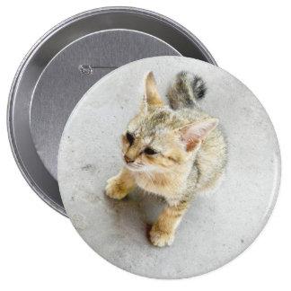 cat 10 cm round badge