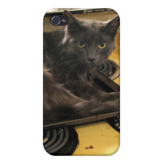 Cat Baked iPhone 4 Cases
