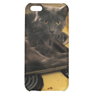 Cat Baked iPhone 5C Cover
