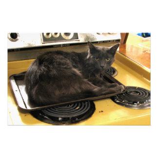 Cat Baked Custom Stationery
