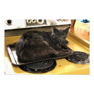 Cat Baked Stationery Design