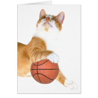 Cat basketball card