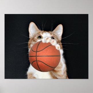 Cat basketball print