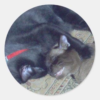 Cat Bath Round Sticker