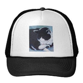 Cat Bathing Design Trucker Hats
