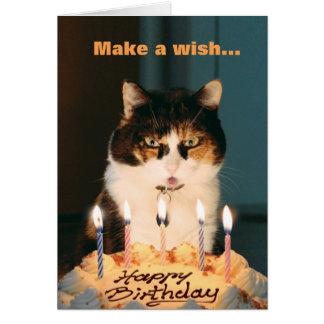 Cat Birthday Card Cute Funny humor Best Silly
