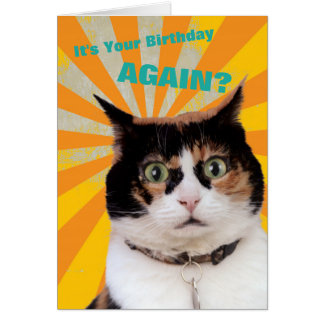 Cat Birthday Card Funny Cute Adorable Best