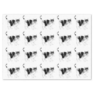 CAT (BLACK AND WHITE) Tissue Paper