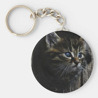 Cat blue eyes basic round button key ring