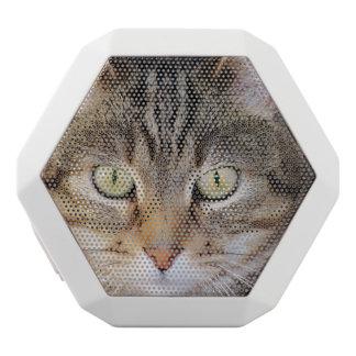 cat white boombot rex bluetooth speaker