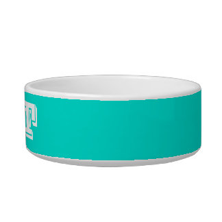 Cat Bowl by Janz Small Turquoise