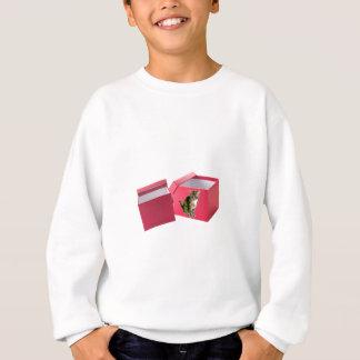 Cat Box Sweatshirt