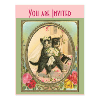 Cat Bride and Groom Wedding Day Postcard