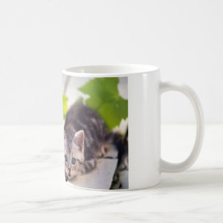 Cat & Bunny Best Friends Mug