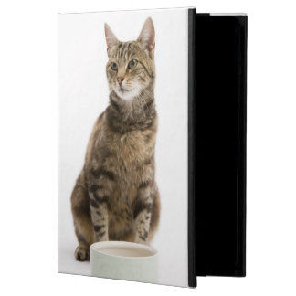 Cat by bowl cover for iPad air