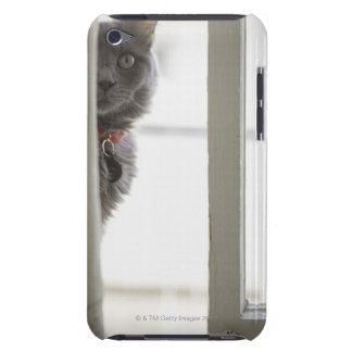 Cat by window Case-Mate iPod touch case
