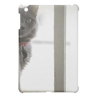 Cat by window iPad mini covers