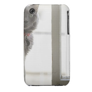 Cat by window iPhone 3 covers