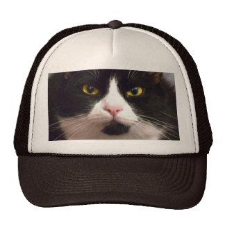 Cat Cap