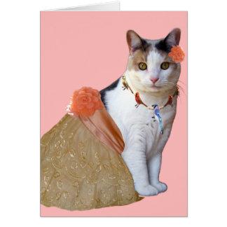 Cat Cards,Happy Bird..ay! Card