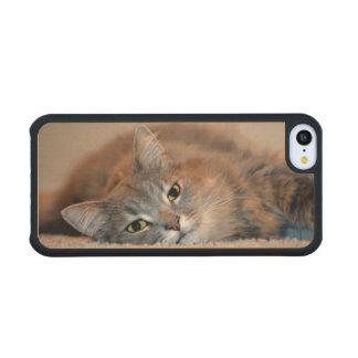 Cat Carved® Maple iPhone 5C Case