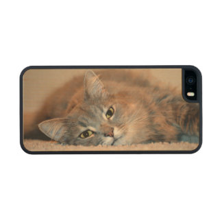 Cat Carved® Maple iPhone 5 Case