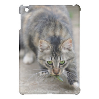 cat caught a lizard case for the iPad mini