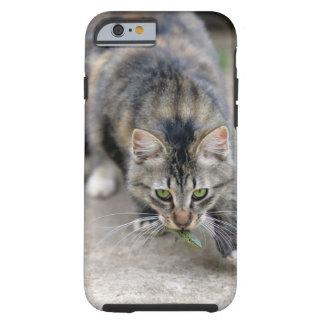 cat caught a lizard tough iPhone 6 case