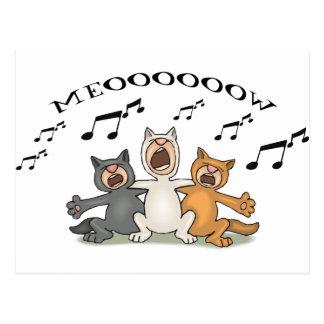 Cat Choir Postcard