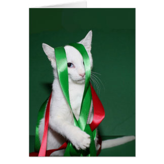Cat Christmas help Greeting Card