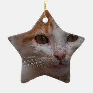 Cat Christmas Ornament