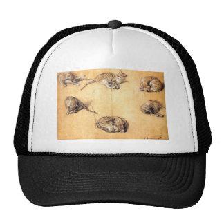 cat-clip-art-8 cap