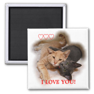 Cat Couple I Love You Magnet