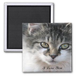 Cat Cutie Square Magnet