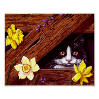 Cat Daffodils Barn Original Art Creationarts Poster
