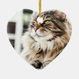 Cat deep in thought christmas ornament