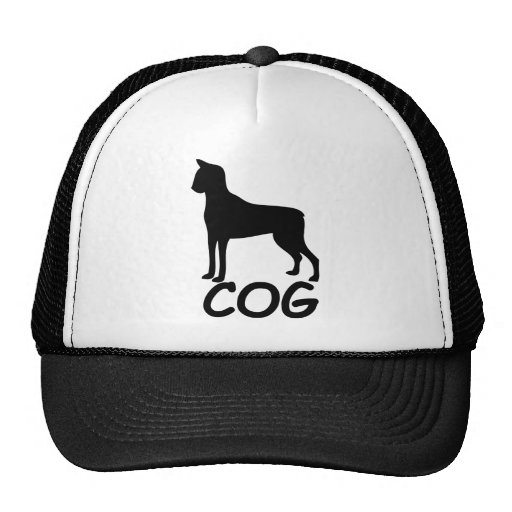 Cat + Dog = Cog Hat